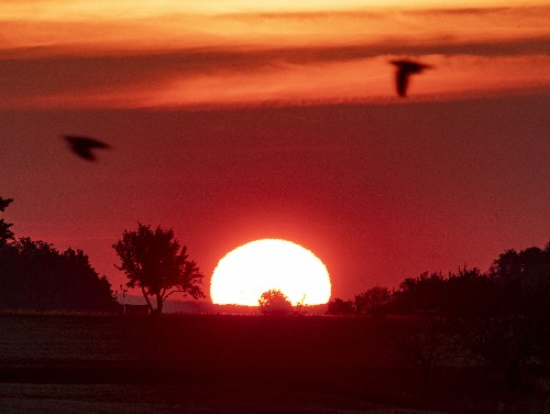 France put on hot weather alert as heatwave reaches Europe