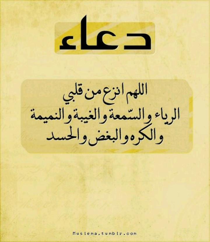 نصائح وحكم - Magazine cover