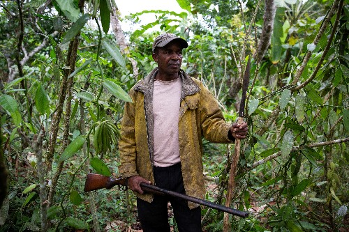 Madagascar vanilla crop quality suffers as thieves spark violence