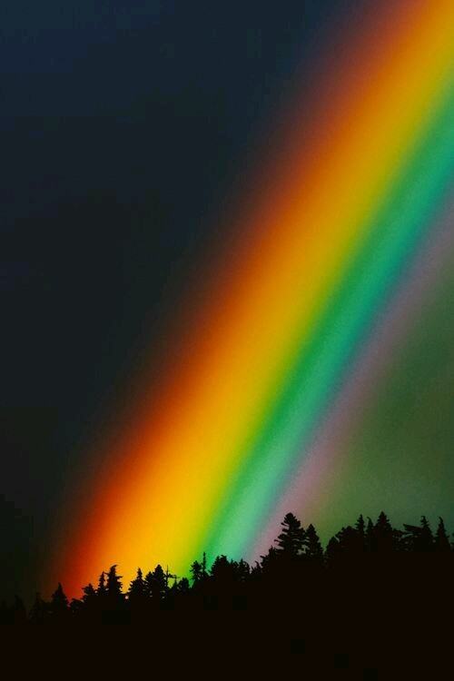 The Rainbow One - cover