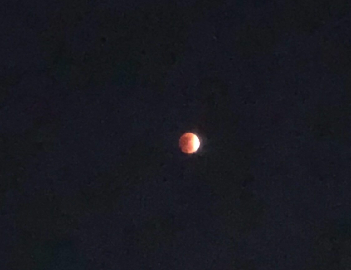 Blue moon, looking more red than blue. January 31, 2018 iPhone X, zoomed 2x and cropped. No filter.