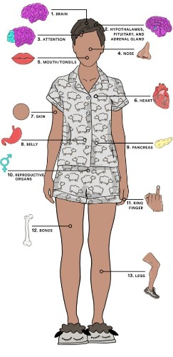 How Every Body Part Is Affected by Sleep