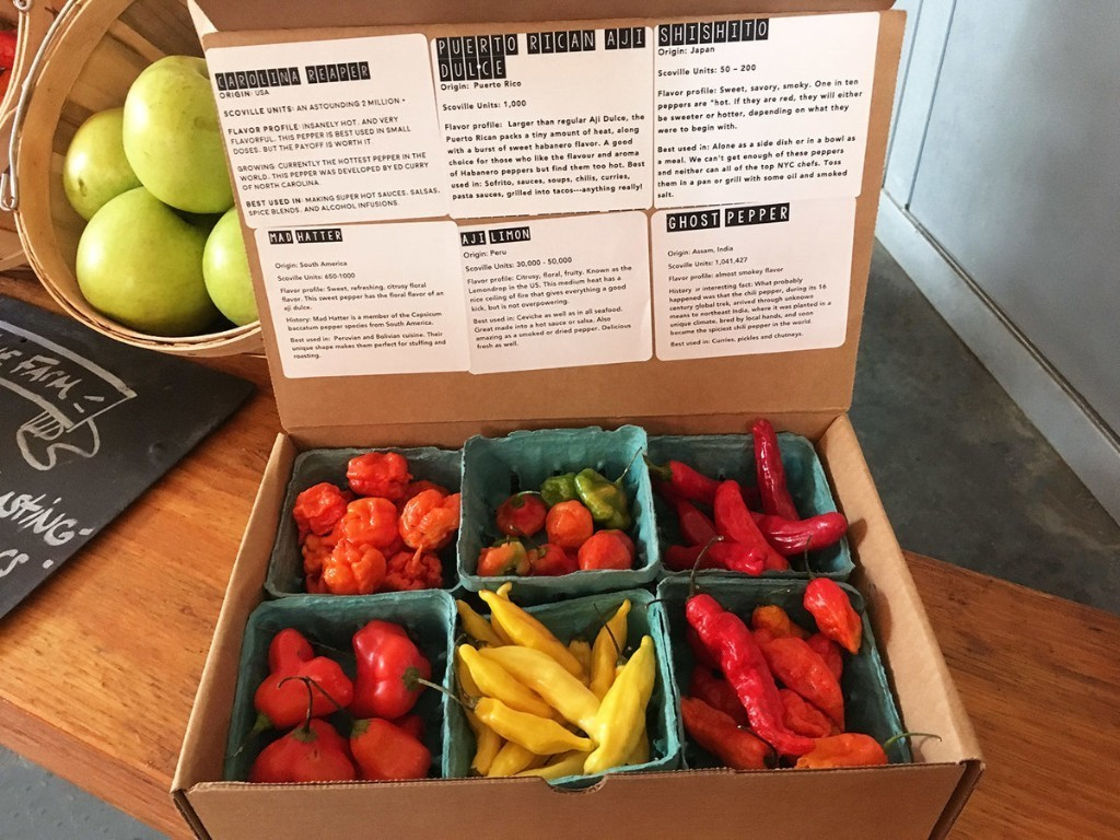Get the World's Hottest Peppers Mailed to You Every Month From This Subscription Service