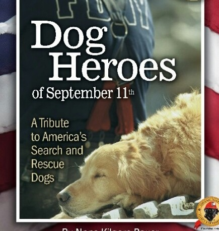 In memory of 9/11 and dedicated to search and rescue