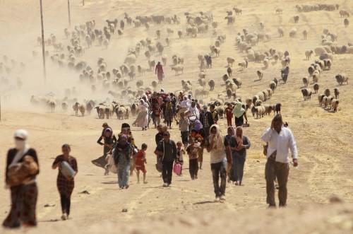 Yazidi Flee Violence in Iraq: Photo Gallery