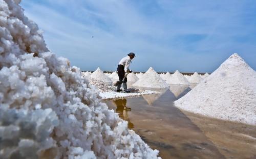Harvesting Salt Crystals in China