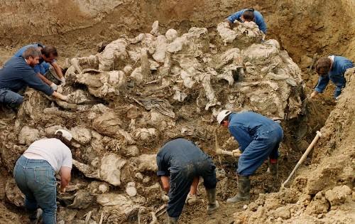 Dutch Supreme Court upholds Srebrenica deaths liability