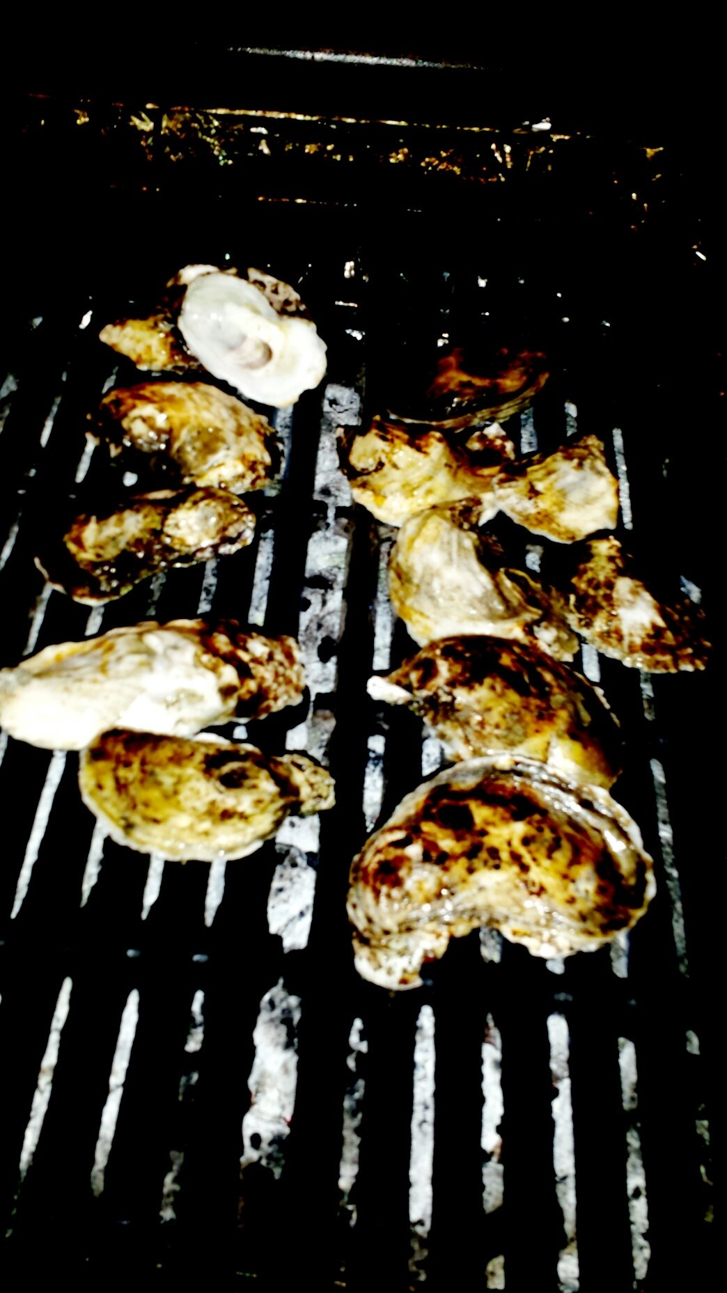 grill oysters