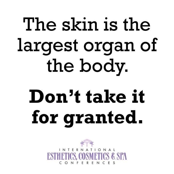 Happy Thursday Blissful Skin Fans! Don't take your skin for granted! www.ablissfulskin.com #tbt #skincare #beauty #browsonfleek #browstylist