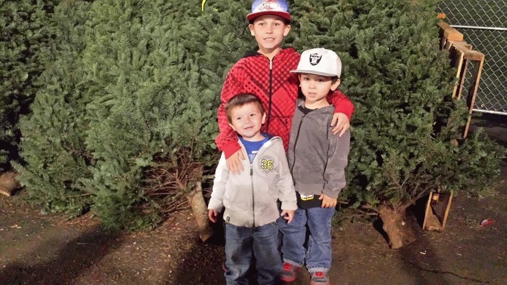 Christmas tree hunting!