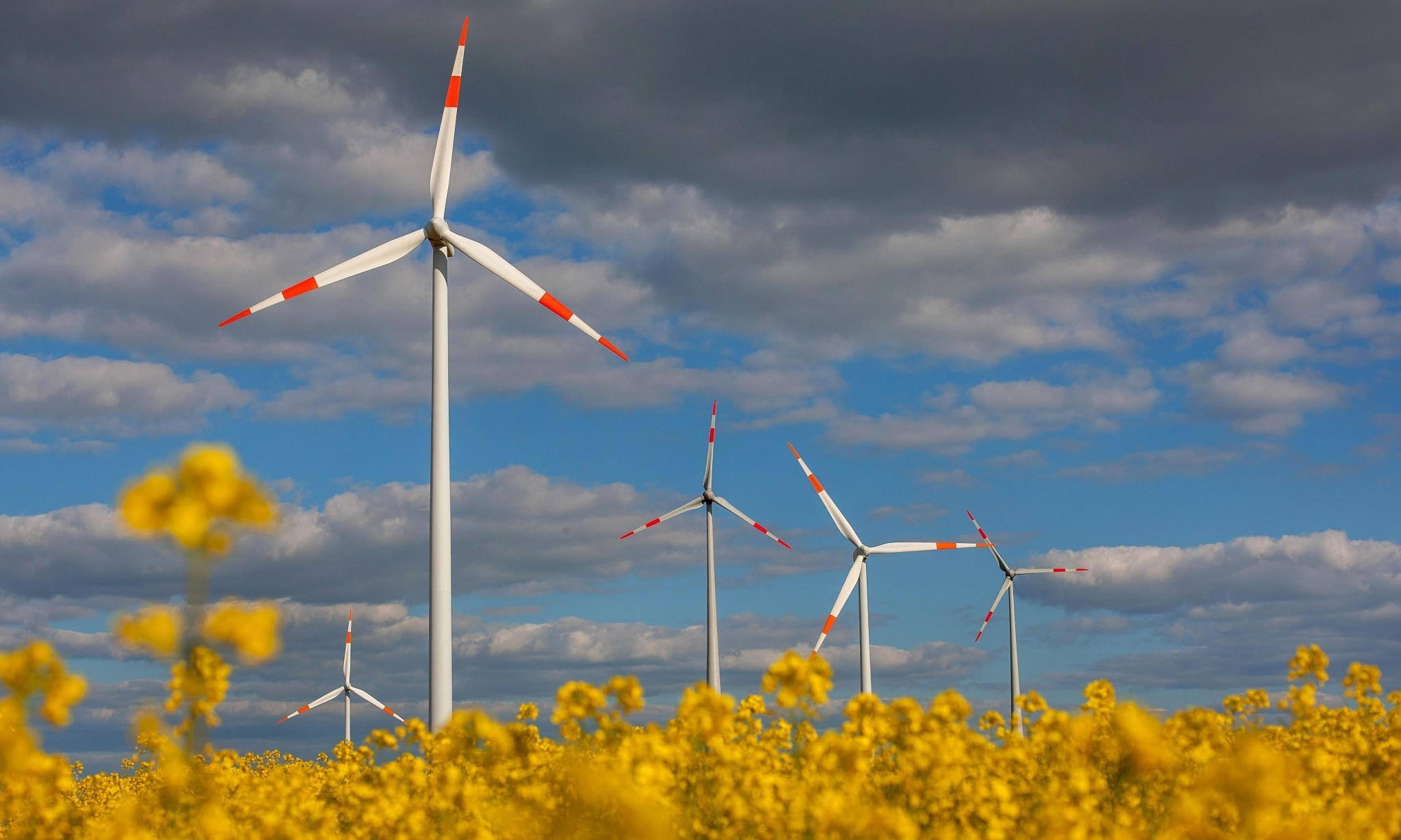 Germany takes steps to roll back renewable energy revolution