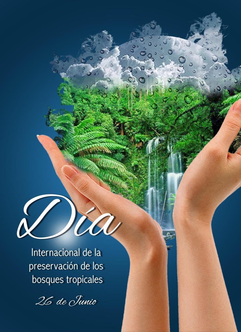 """#DiseñoGrafico #rrpccsdigital """"Día internacional de la preservación de los bosques tropicales """""""
