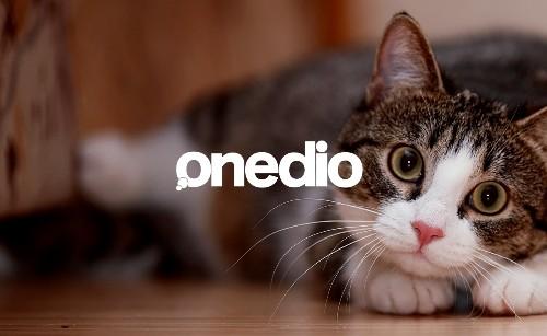Sevilen içerik sitesi Onedio artık Flipboard'da!
