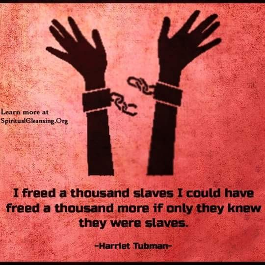 I freed a thousand slaves! #quotes #thoughts #wisdom