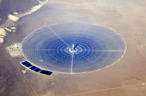 Solar power towers are incinerating birds