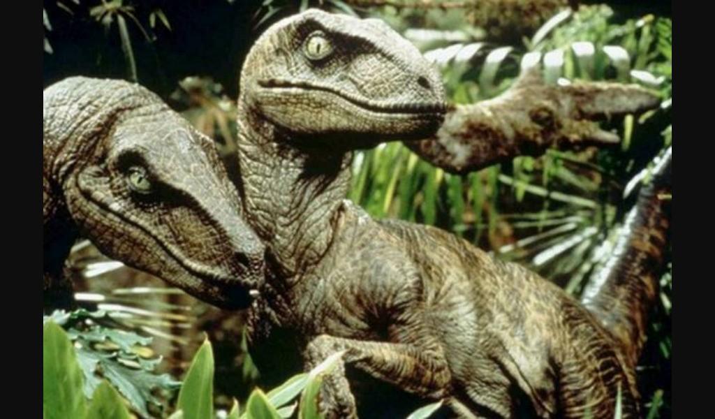 Velociraptors hunting in Jurassic Park