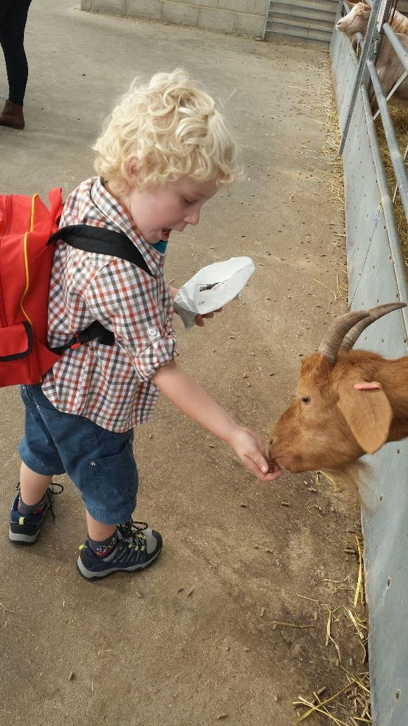 Having a fun time with kids at mead open farm...