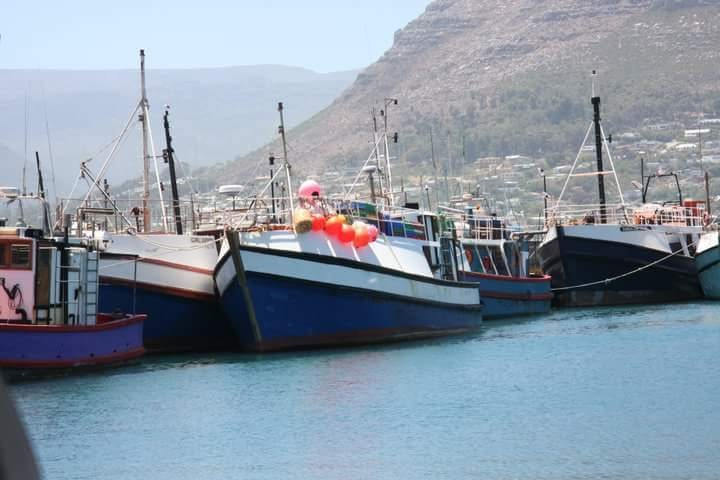 Fishing boats tied up at Kalk Bay harbour Cape Town after returning from fishing