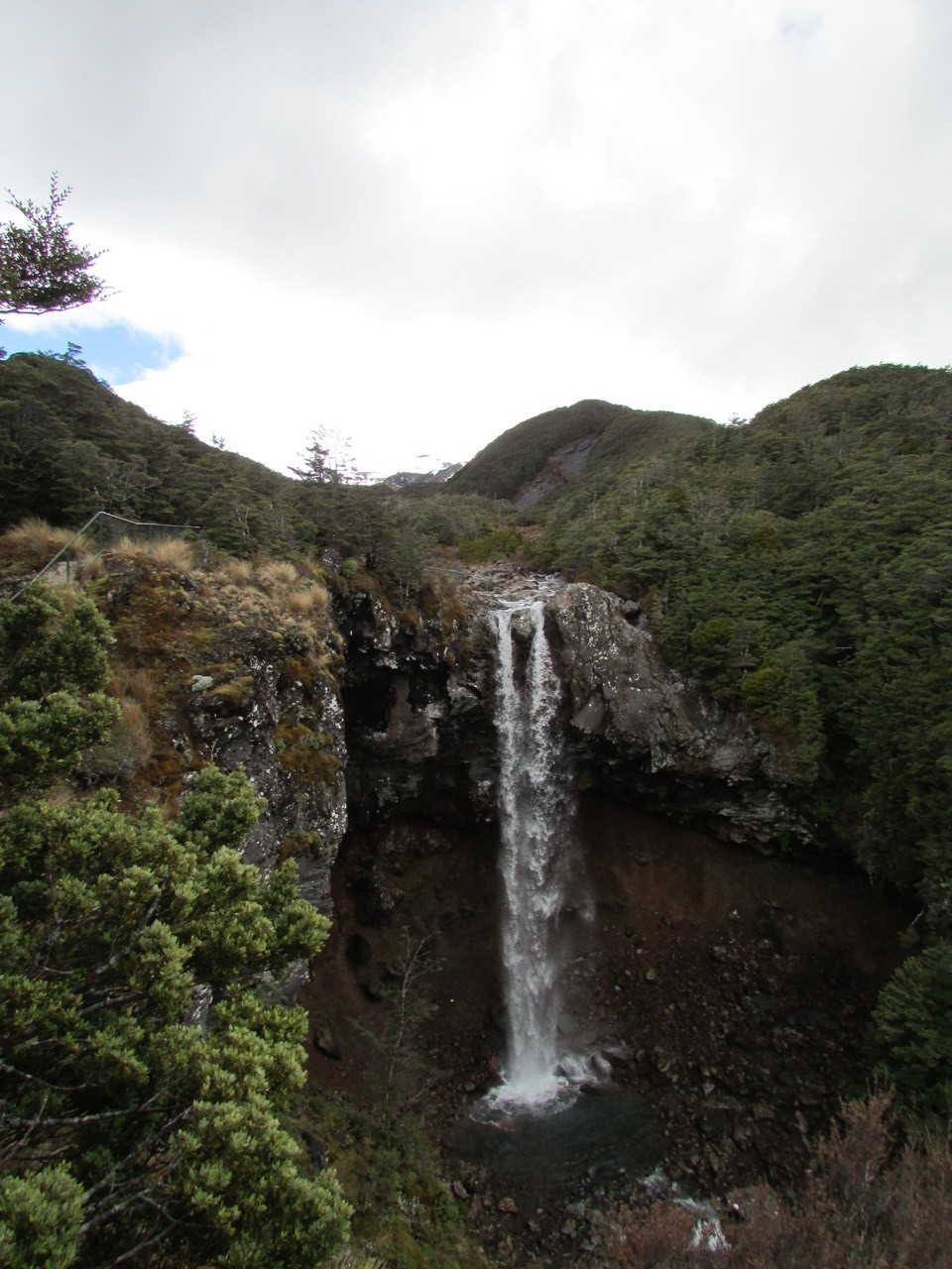 Mangawhero Falls - at the end of the track. The foothills of Mt Ruapehu, the water is snow melt so cold and clean, runs from here down to the plains through native mountain Beech rain forest.