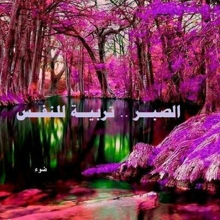 حلو الكلام - Cover