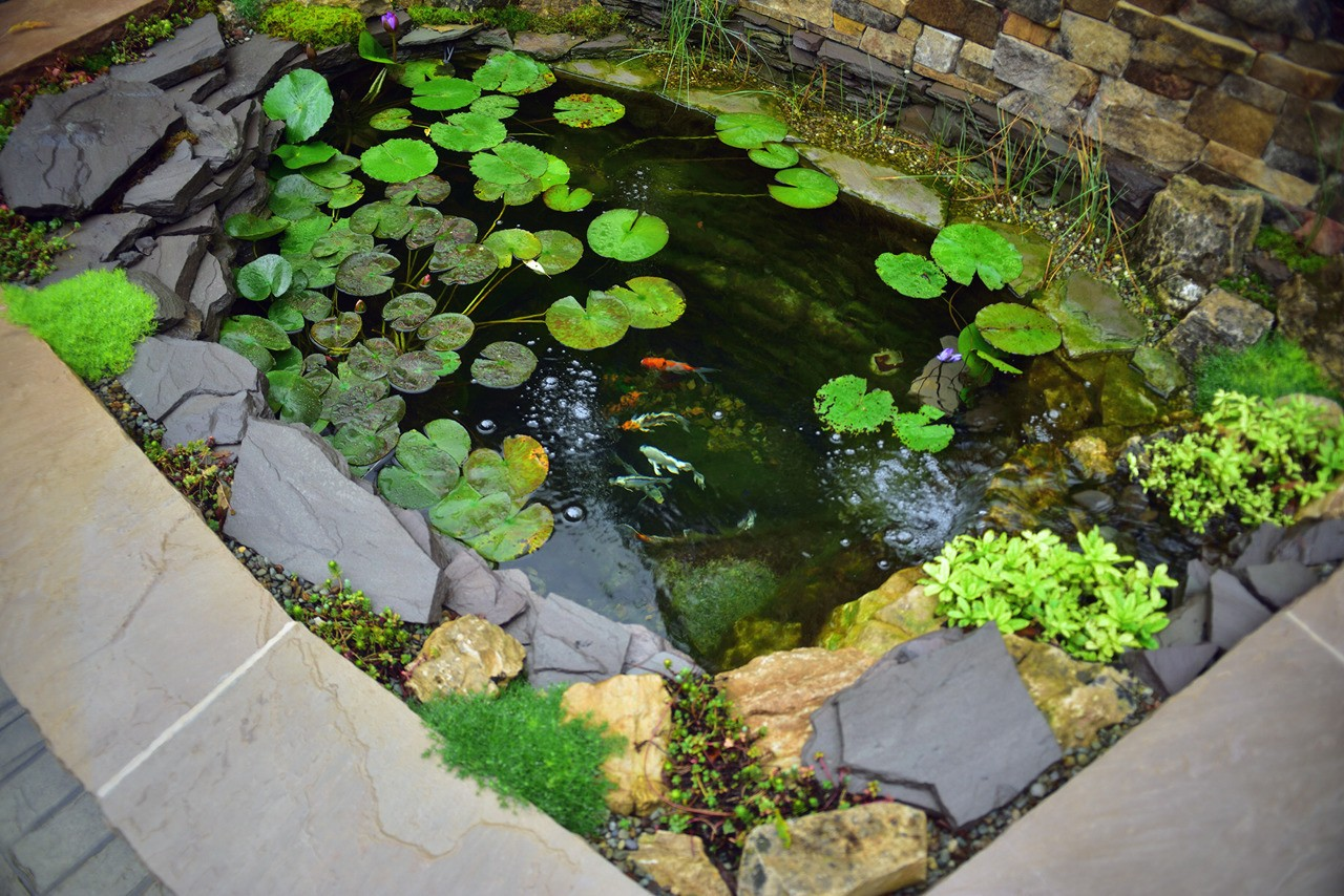 Small, but deep, koi pond in Gibsonia PA. Installed by Aquatic Edge