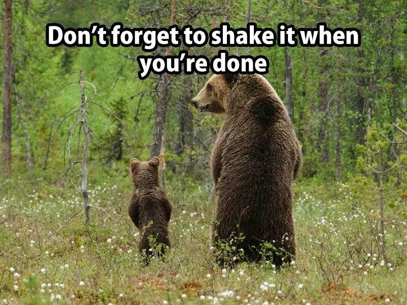 Bears standing up looking as if their peeing like men