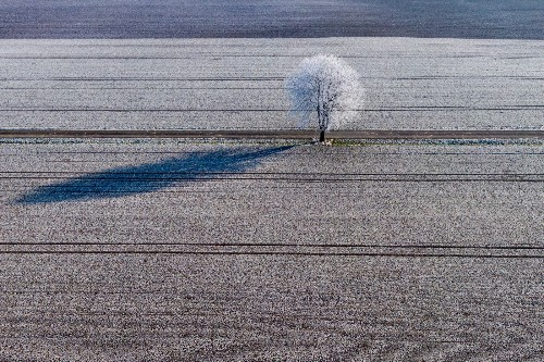 Chilly Scenes of Winter: Pictures