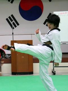 Korean Taekwondo.