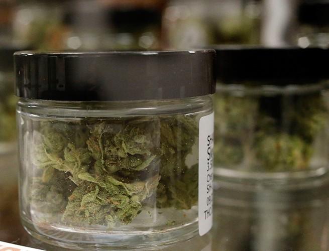 ¿Mariguana medicinal? Conoce el ABC de la iniciativa