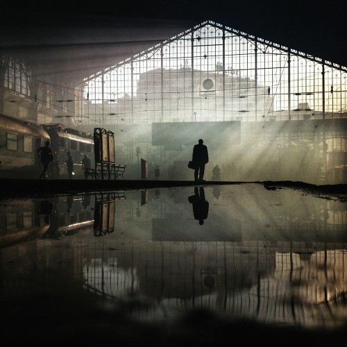These Are 20 Of The World's Best Photos Taken With Cell Phones