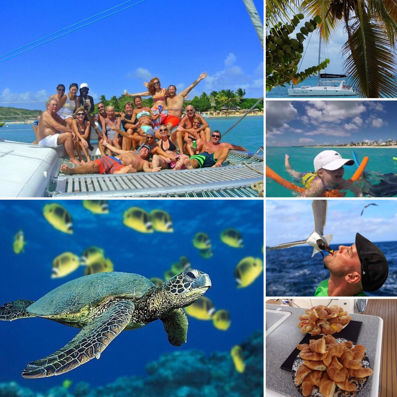 Are you in ❤️ST.MAARTIN and LOVE sailing?⛵️Check out our new trip ☀️ Wednesday - June 7th - 2 ISLAND STOP. 1st stop for snorkeling at Creole Rock (French nature reserve). 2nd stop at Rendezvous Bay - Anguilla, with fresh water pool on the beach and buffet lunch at the resort restaurant. 3rd stop at La Samanna in Sint Martin. You will see the French side - Dutch side and Anguilla all in one day.🏝🐠 Thursday - June 8th - AROUND THE ISLAND . 1st stop for snorkeling at Creole Rock (French nature reserve). 2nd Stop for lunch at restaurant in Anse-Marcel, on the French side. 3rd stop at Tintamarre (deserted island) in French nature reserve. This is one of the best beaches to see and swim with turtle's. 🏖🐢 ☀️ NEW TOUR ☀️- Friday - June 9th Tintamarre- Anguilla 1st stop at Tintamarre (deserted island) in French nature reserve. This is one of the best beaches to see and swim with turtle's. 2nd stop at Rendezvous Bay - Anguilla, with fresh water pool on the beach and buffet lunch at the resort restaurant.🏝🐢 Saturday - June 10th - LITTLE BAY-ANGUILLA. 1st stop at Anguilla Nature reserve for snorkeling and paddle boarding. This secluded and beautiful beach is only accessible by boat, and is surrounded by high cliffs and small caves. Lunch will be on board. On the way back we will have a 2nd stop at La Samanna for a quick swim in the sea or some cliff jumping. La Samanna is an exclusive hotel build on the border of half-French, half-Dutch island of SXM. ⛱🐟🏝 Check out our Trip Advisor and our website. For more details contact us on +1 721 580 4404, or info@sugarrushcharters.com🙂