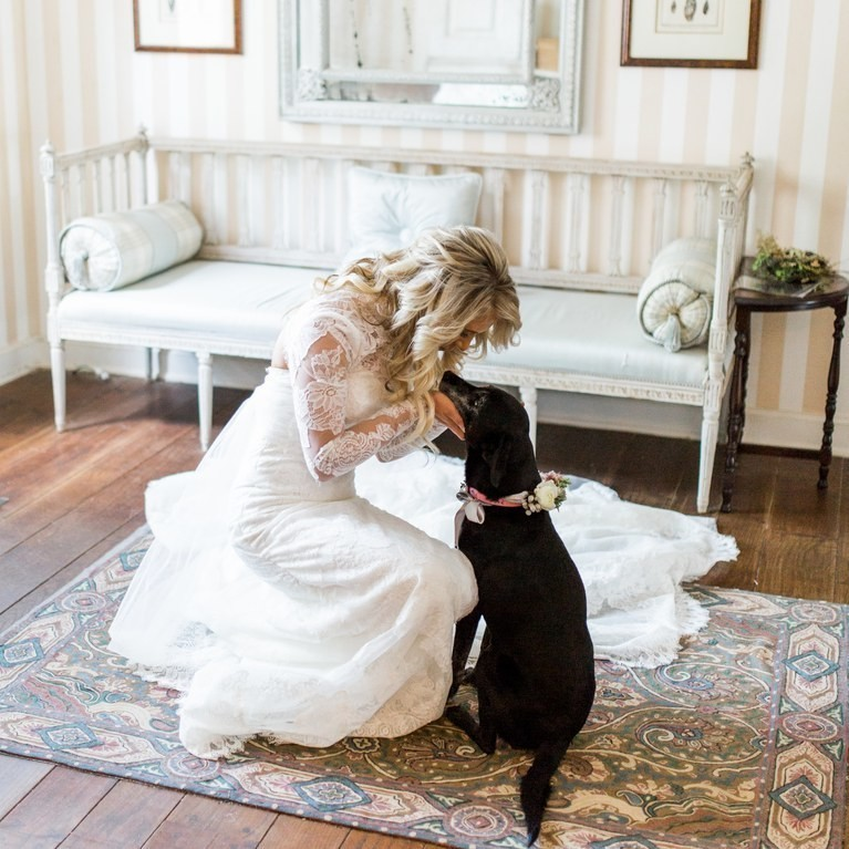 Wedding Ideas That Incorporate Your Fur Baby into the Big Day