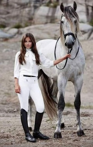 Horses And Beauty - Cover