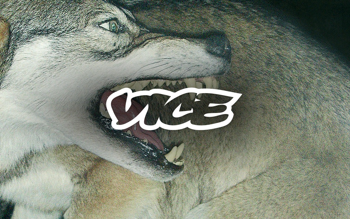 Vice Is Nice—on Flipboard