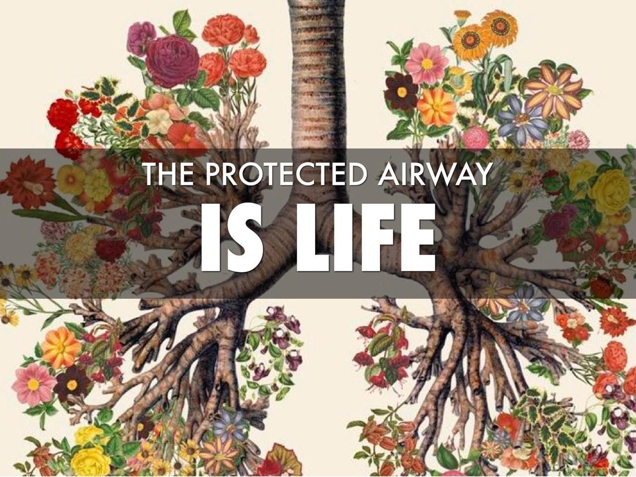 #protectedairway #airway2016
