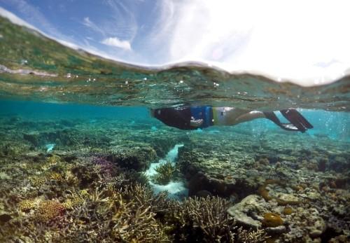 U.S. resists plan to link climate change, ocean health: U.N. co-chair