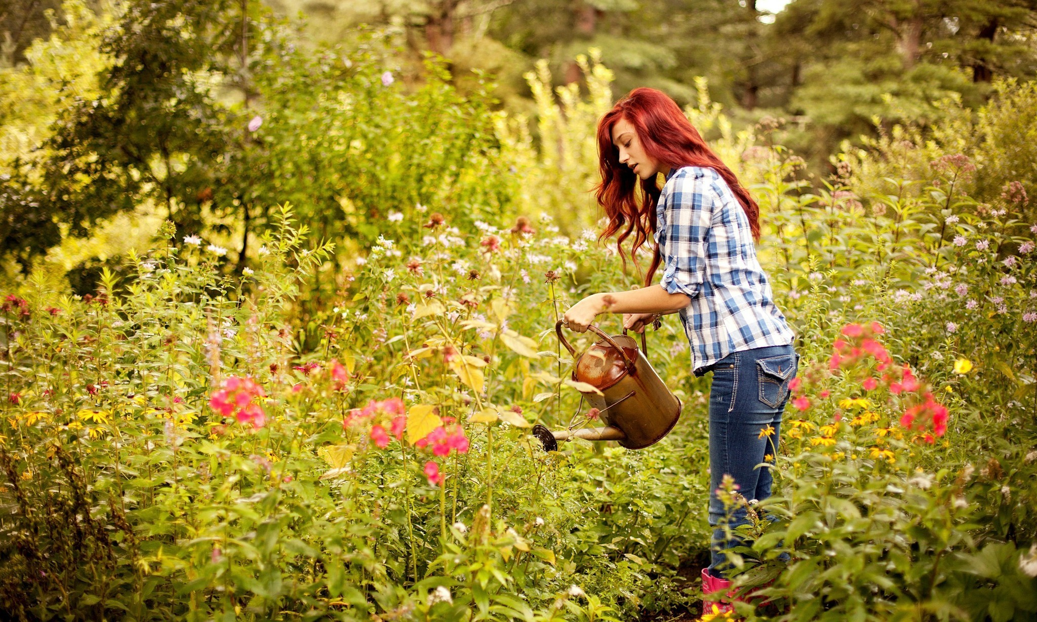 If you want to practise mindfulness, the garden is the place to be