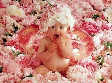 Çiçek modası - Magazine cover