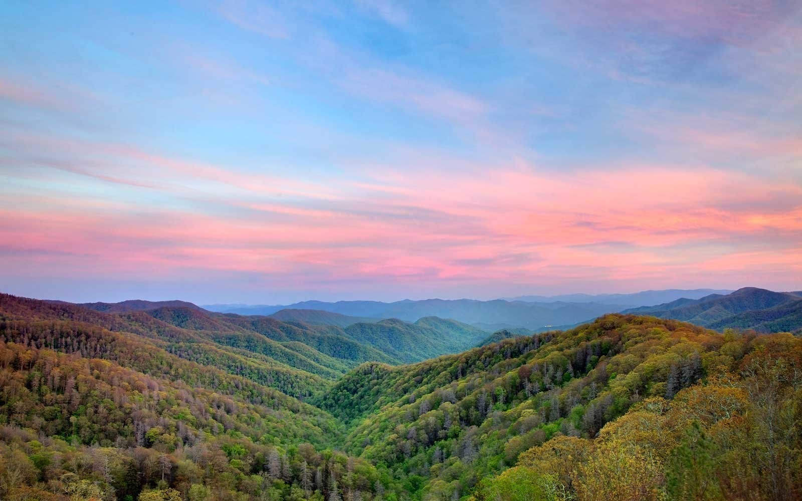Taking a Train Through the Great Smoky Mountains Needs to Be on Your Bucket List