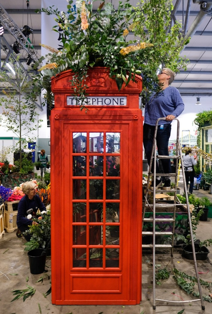 The Annual Harrogate Spring Flower Show in Pictures