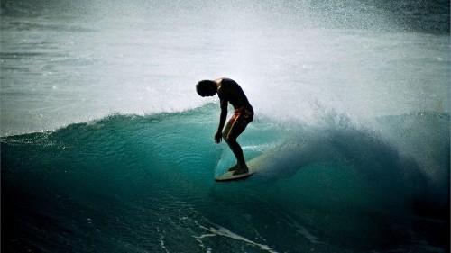Can Surfing Reprogram the Veteran's Brain?