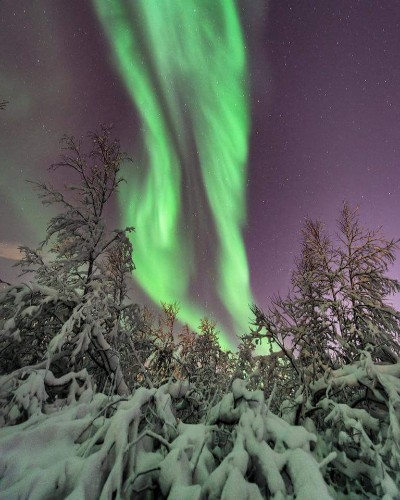 Incredible Aurora Borealis putting on a show over Sweden tonight. Pic credit: Mia Stalnacke