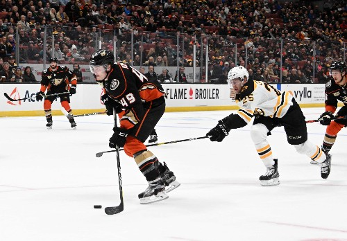Halak records 30 saves as Bruins shut out Ducks