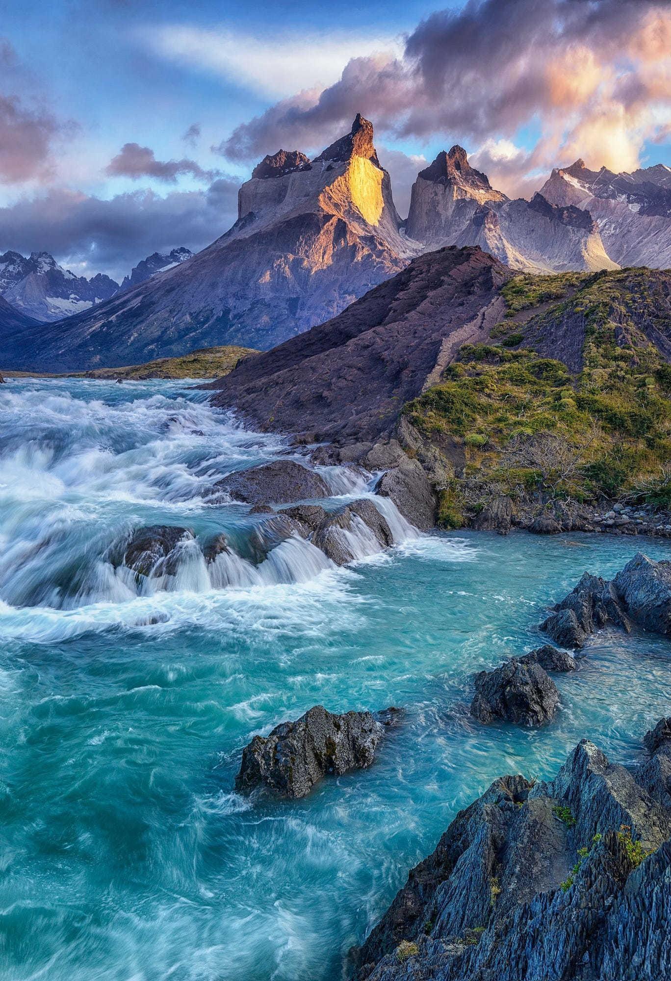viola ☀️ Chile