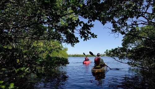 Sanibel + Captiva Islands: Florida's Best Family-Friendly Nature-Loving Escapes
