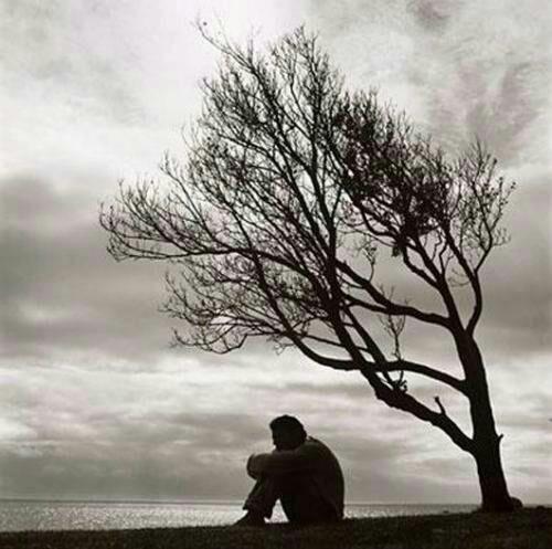 النفوس الصادقه هي تلك التي تتحملنا ﻻتنظر الى اخطائنا وترحل تقف بجانبنا دائما فﻻ تزيد من احزاننا بل يبحثون عما يسعدنا