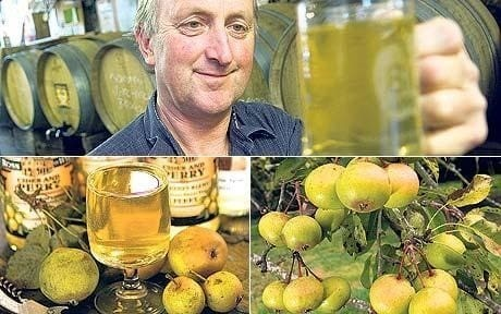 Pear cider: toast the fine art of perry making