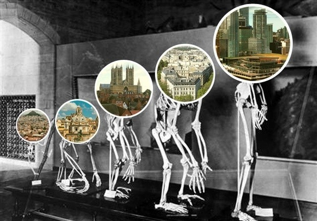 Moving Toward an Evolutionary Theory of Cities
