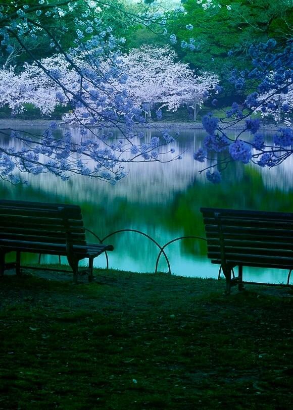 Blue Moonlight - cover