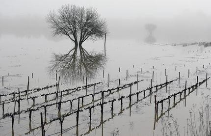 Wine country is among areas hit hard by storms in California